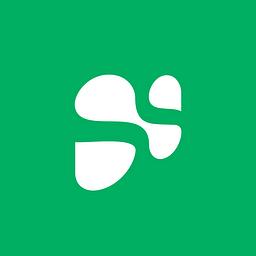 Avis sur l'agence Silicon Salad