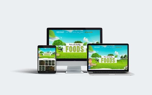 Expo Valley Web UI - Graphic Design