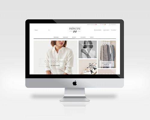 Principe 22 - Creación de Sitios Web