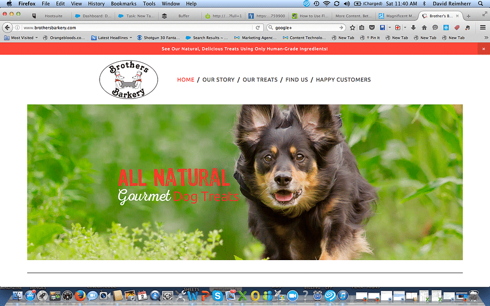 Brothers Barkery Website Build