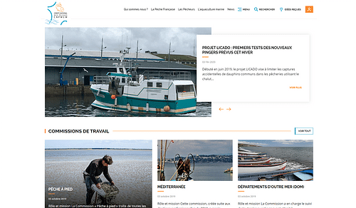 Le comité des pêches prend les devants - Création de site internet