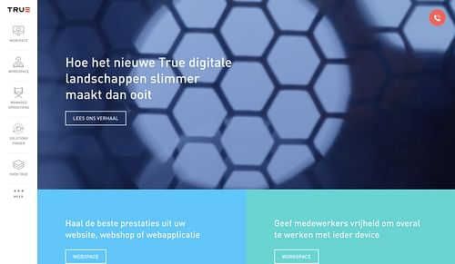 Wordpress website en Online marketing voor True.nl - Website Creatie