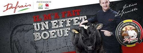 Dufrais - Campagne Effet Boeuf 2015-2016 - Création de site internet