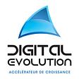 Digital Evolution logo