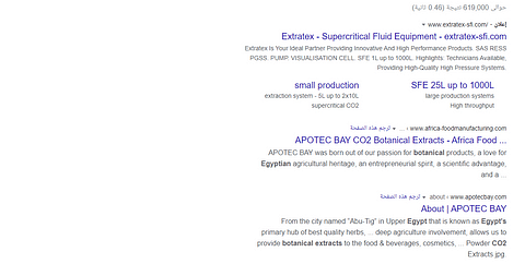Apotec Bay SEO Project