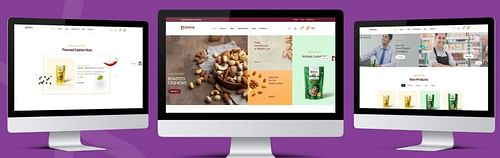 E-commerce Website   Dry Fruits and Nuts Exporter - Website Creation