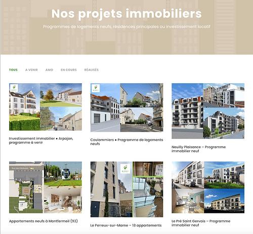 Birdy Promotion (Paris) - Website Creation