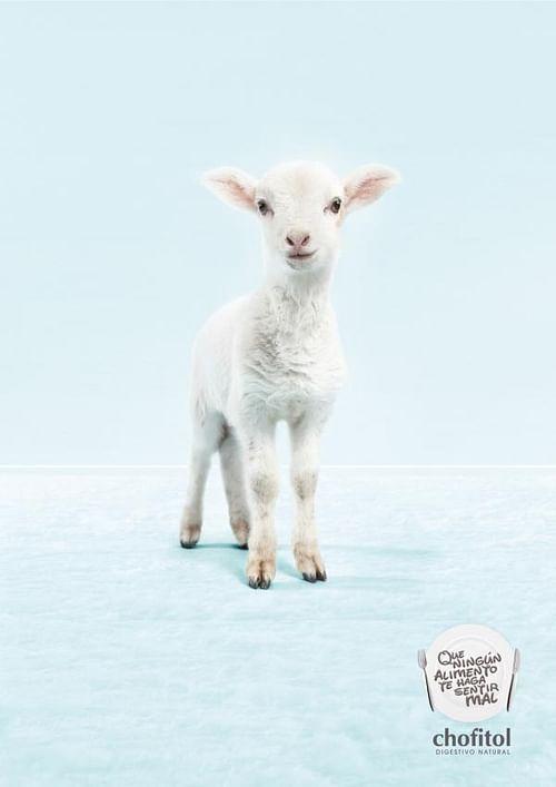 Digestivo Natural, Lamb - Publicidad