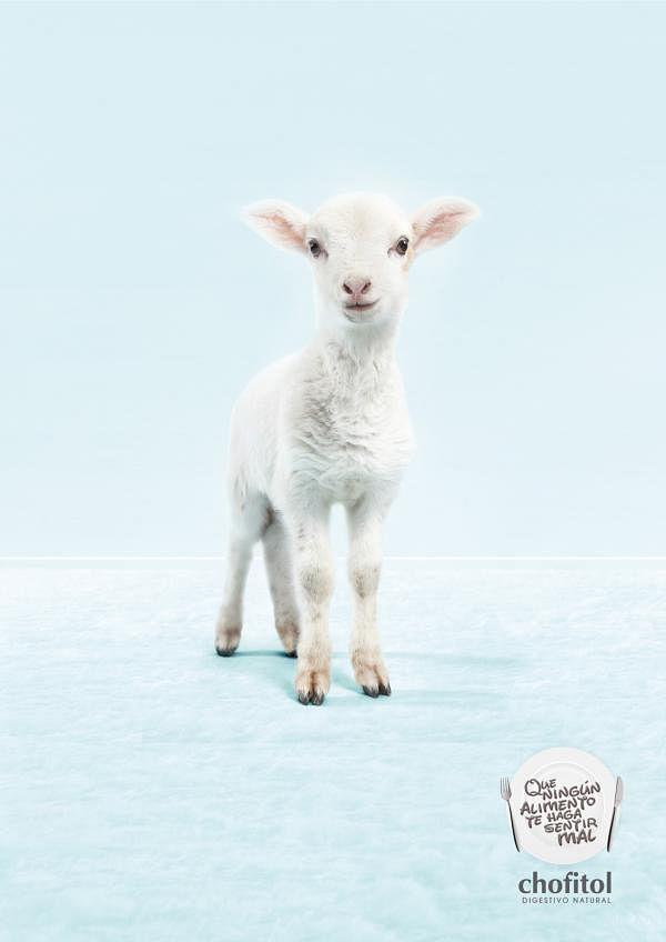 Digestivo Natural, Lamb