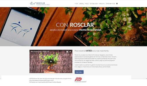 Campaña internacional B2B - Publicidad Online