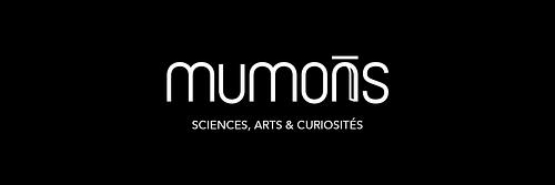MUMONS - Création de site internet