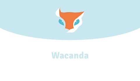 Wacanda