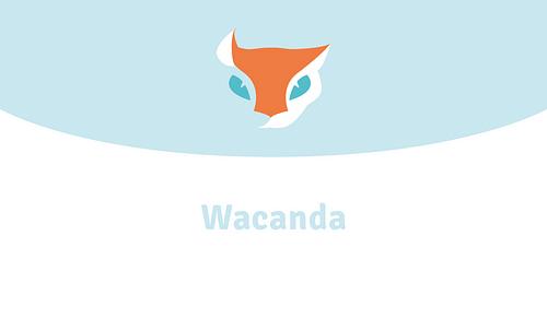 Wacanda - Branding & Positioning