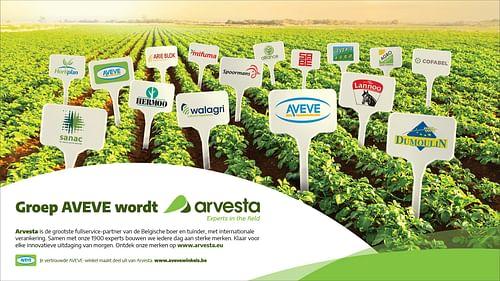 Groep Aveve / Arvesta - Branding & Positionering