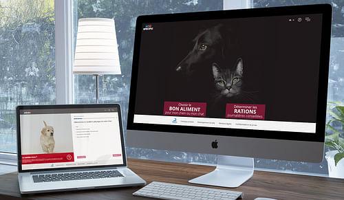 Un outil de calcul de nutrition animale - Application web