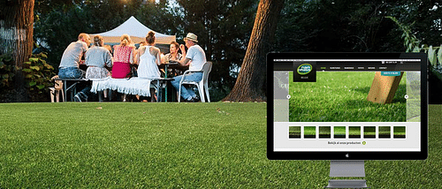 SEO CASE STUDIE:NAMGRASS.BE - SEO