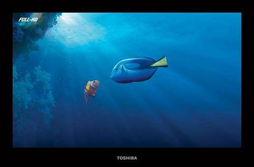 CLOWN FISH - Publicidad