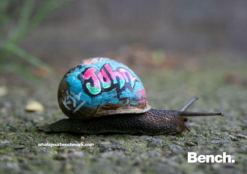 Bench International Kampagnen-Pitch - Social Media