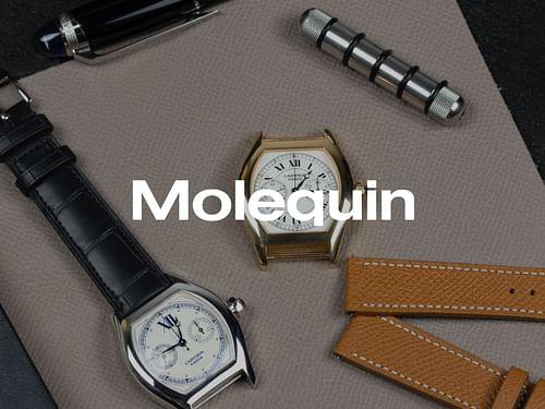 Molequin - Website Creation