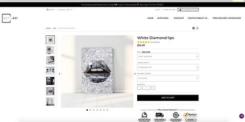 Création de la boutique en ligne - Création de site internet
