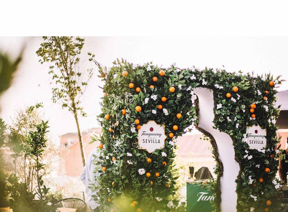 Campaña Tanqueray Flor de Sevilla