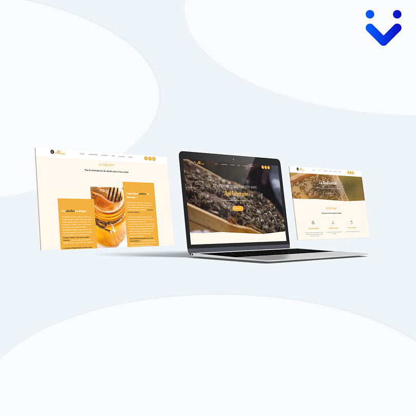 Site vitrine API Auvergne