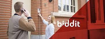 Biddit - Publicité en ligne