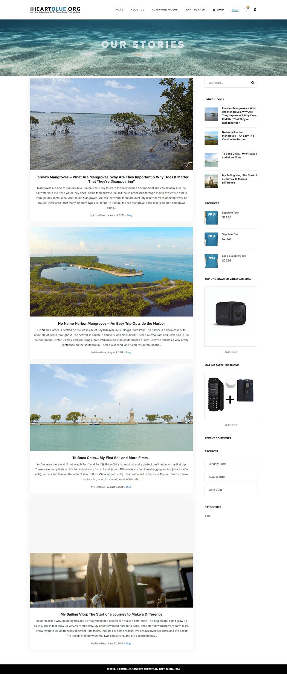Website Design & Web Content Development