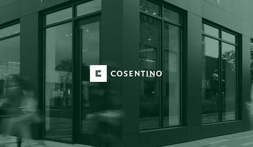 CASO DE ÉXITO COSENTINO - Publicidad Online