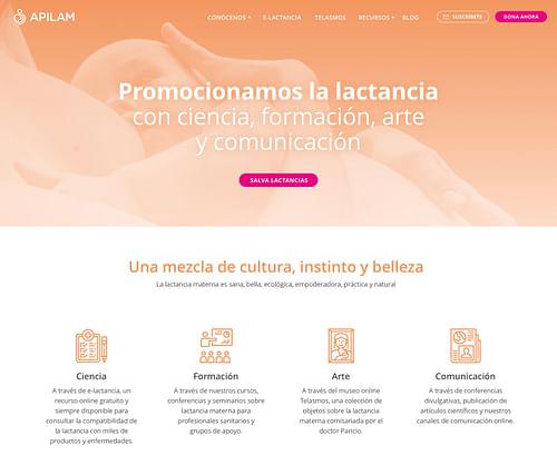 Apilam - Creación de Sitios Web