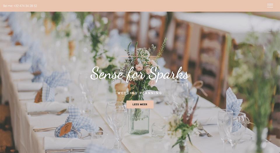 Websiteontwerp Sense for Sparks