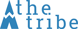 Avis sur l'agence theTribe