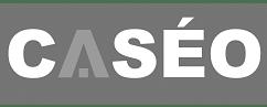 Campagnes AdWords pour Caseo Maison - Publicité en ligne