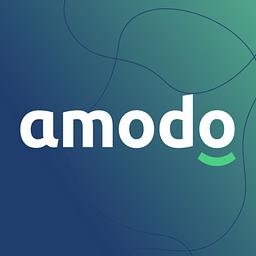 Comentarios sobre la agencia Amodo