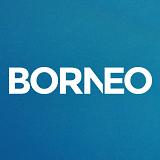 Comentarios sobre la agencia BORNEO