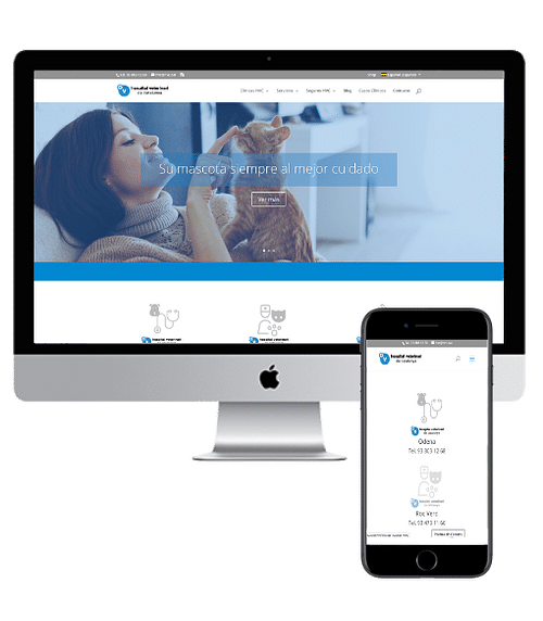 Desarrollo Web y Posicionamiento Orgánico - Creación de Sitios Web