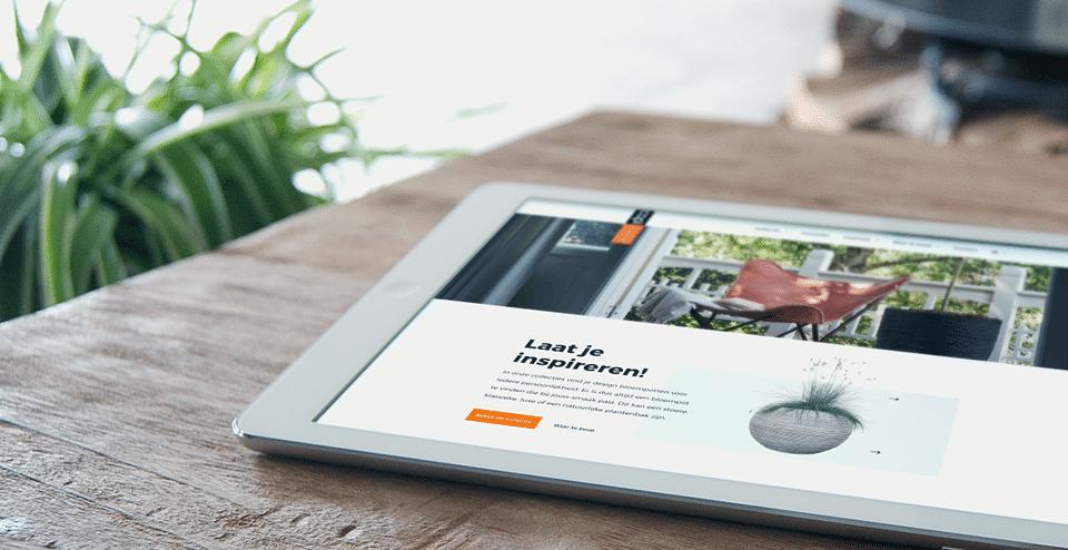 Corporate WordPress website Capi Europe