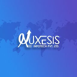 Review of Auxesis Infotech agency