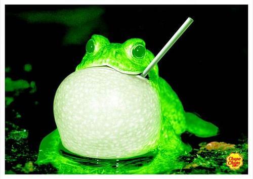 Frog - Advertising