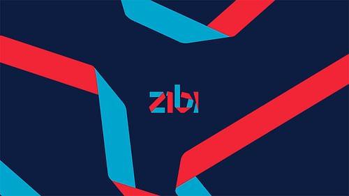 Zibi - Branding & Positioning