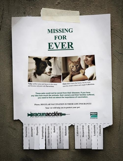 Missing for Ever - Publicidad