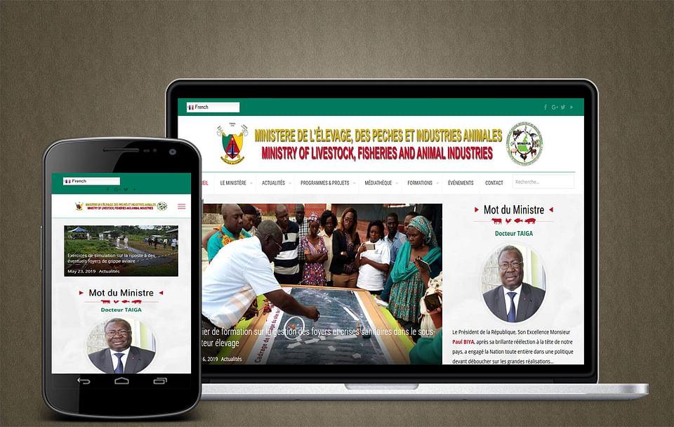 Création du site web du MINEPIA Cameroun