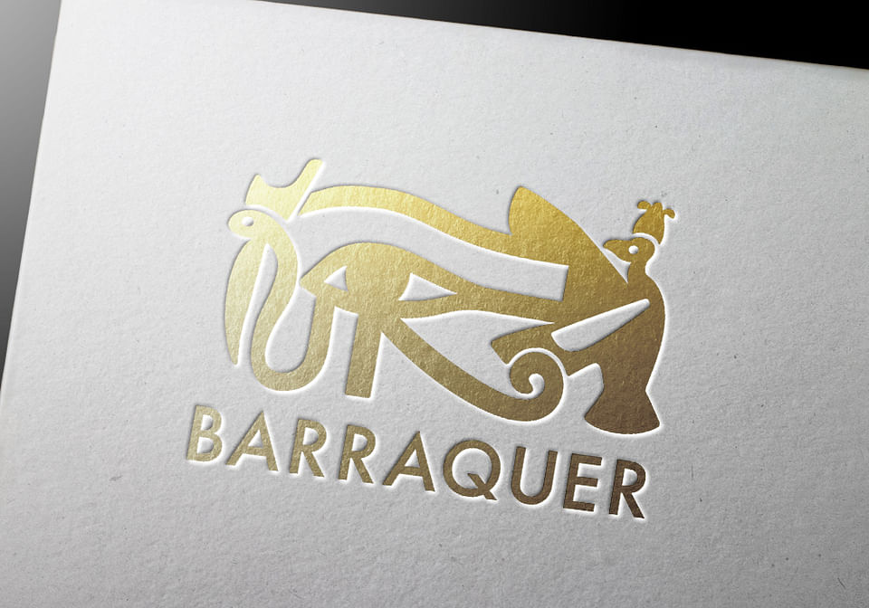 Diseño gráfico para Barraquer