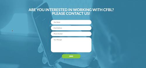 Webdesign: Centre of Balanced Leadership - Website Creatie
