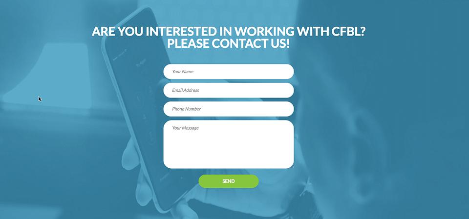 Webdesign: Centre of Balanced Leadership