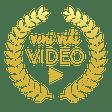 Veni Vidi Video logo