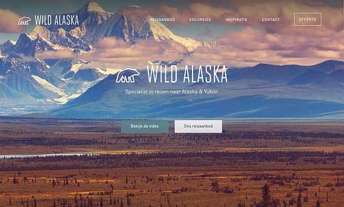 Webdesign for travel agency - Website Creatie