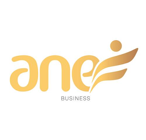 CLIENTE ANEF FORMACIÓN - Diseño Gráfico
