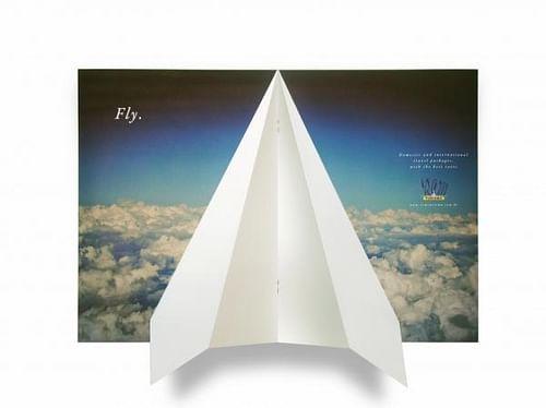 FLY - Branding & Positioning