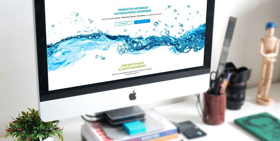 Diseño de sitio web, blog y Social Media